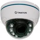 Внутренняя купольная цветная видеокамера AHD TSc-Di720pAHDf (3.6)